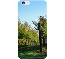 Tasmanian Vineyard iPhone Case/Skin