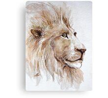 Wise lion Canvas Print