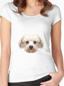 Maltese dog. Women's Fitted Scoop T-Shirt