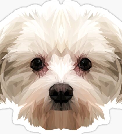 Maltese dog. Sticker