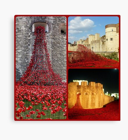 London - Poppies at The Tower of London Canvas Print