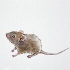 Mouse by LauraMSS