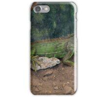 Iguana............... iPhone Case/Skin