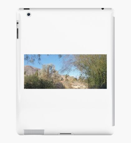 TRANQUIL SCENE TO SNOW CAP MOUNTAINS iPad Case/Skin