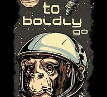 To Boldly Go by tinaodarby