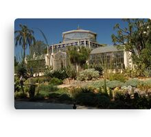 Palm House Canvas Print