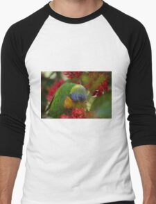 Rainbow lorikeet feeding. Men's Baseball ¾ T-Shirt