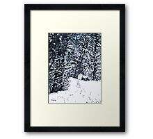 SNOW COVERED FOREST 2 Framed Print