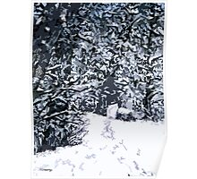 SNOW COVERED FOREST 2 Poster