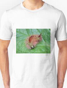 Pale Tussock Calliteara pudibunda Unisex T-Shirt