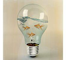 ideas and goldfish 02 Photographic Print