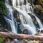 Toorongo falls by bluetaipan