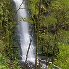 Erskine falls by bluetaipan