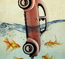 VW beetle and goldfish by Vin  Zzep