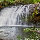 Near champagne falls by bluetaipan