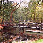 Wooden Bridge by ienemien