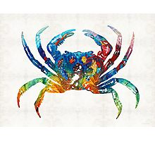 Colorful Crab Art By Sharon Cummings Photographic Print