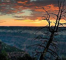 North Rim Dawn by Mike Herdering