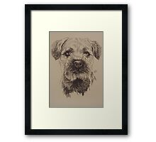 Border Terrier Framed Print