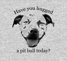 Have you hugged a Pit Bull today? Womens T-Shirt