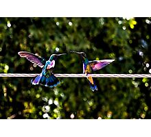 Hummer Face-Off Watercolor Photographic Print