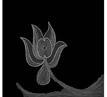 Lonely Dark Flower Photographic Print