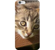 Striped kitten iPhone Case/Skin