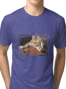 Striped kitten Tri-blend T-Shirt
