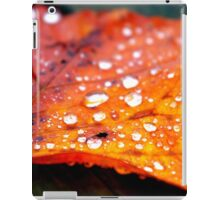 Autumn Dew iPad Case/Skin