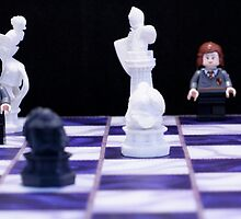 Harry Potter Chess by Kristen McFeeters