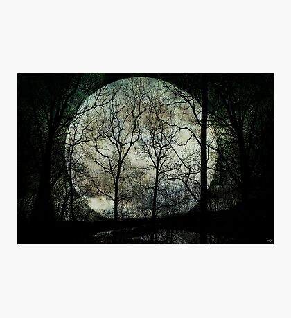 Season of the Witch Photographic Print