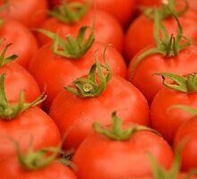 Tomatoes  by barnymartin