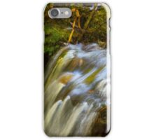 Almost Abstract in the Forest iPhone Case/Skin
