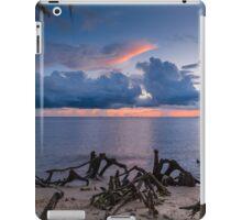 Cypress Knees iPad Case/Skin