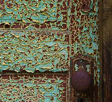 Rustic Shed Door (Detail) by Edward A. Lentz