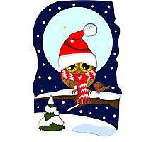 Baby Owl with oversized Santa hat and scarf Photographic Print