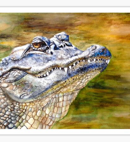 Watercolor Florida Gator Sticker