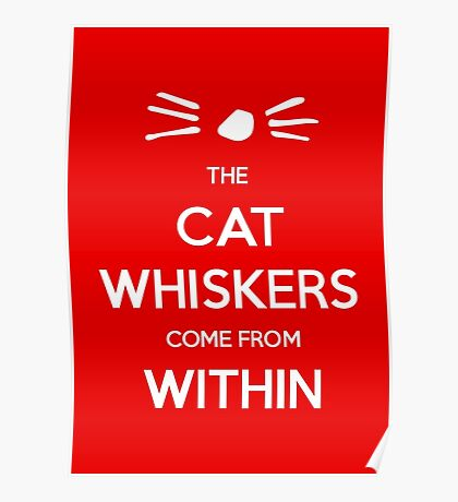 Dan and Phil: The Cat Whiskers Come From Within Poster
