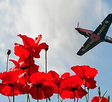 Lest We Forget by © Steve H Clark Photography