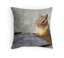 Good Morning, Chippie! Throw Pillow