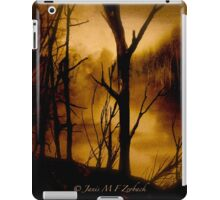 Cobweb Time... iPad Case/Skin