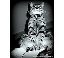 My Precious Boy.. Photographic Print