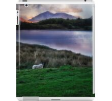 Sheep at sunset  iPad Case/Skin