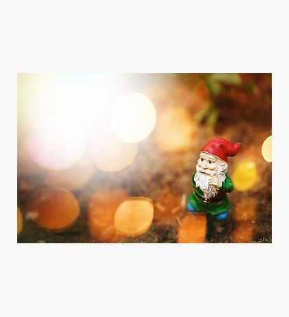 Toy Garden Gnome in Sun Light Photographic Print