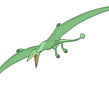 Green Pterodactyl by kwg2200