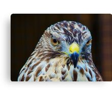 I have a broken wing Canvas Print