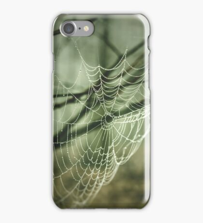 Spider's web. Hipster, vintage colors. Dark green forest iPhone Case/Skin