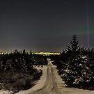 Night in Heiðmörk by Ólafur Már Sigurðsson