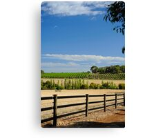 The Vineyard On The Hill Canvas Print