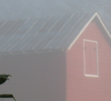 Red Barn Through the Mist... products  Sticker